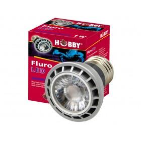 Ampoule LED Hobby Fluro