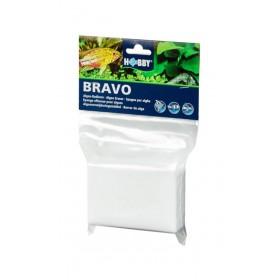 Éponge Hobby Bravo effaceur pour algues