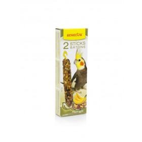 Bâtonnets Grandes Perruches noix & banane Benelux