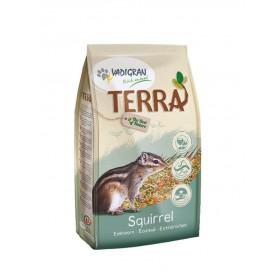 TERRA Écureuil Vadigran-Vadigran-391020