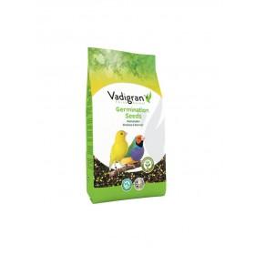 Graines à germer ORIGINAL Vadigran-Vadigran-110010