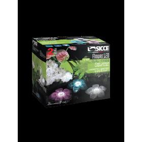 Flower LED Trio Kit Sicce-Sicce-LLF003E