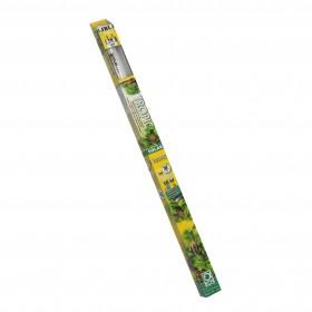 Néon JBL SOLAR TROPIC T8-JBL-6161600