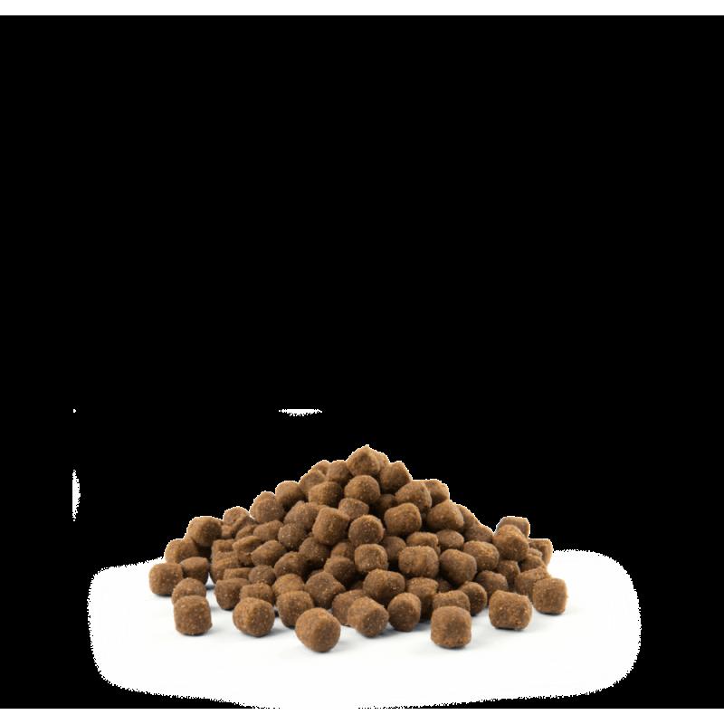 Croquettes Opti Life Adult Digestion Mini