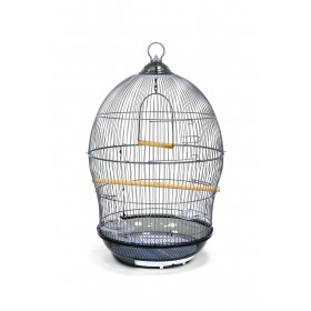 Cage Rétro-HP Aquarium-00370