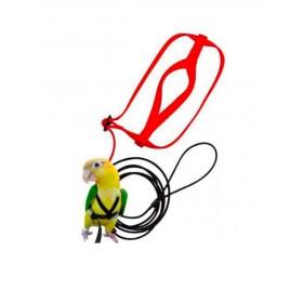 Harnais pour perroquet-Nilufar-00000