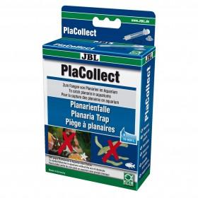 Piège à planaires JBL PlaCollect