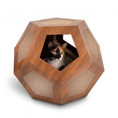 Hexa Box Canadian Cat