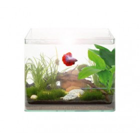 Kit Aquarium Vision RC 14