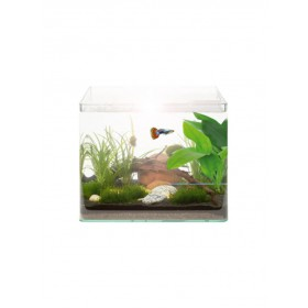 Kit Aquarium Vision RC 20