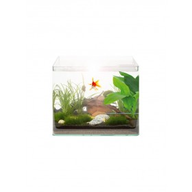Kit Aquarium Vision RC 46