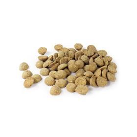 Biscuits Perro - Agneau