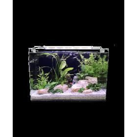 Aquarium Néophyte 60-HP Aquarium-00000