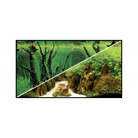 Poster Hobby Canyon/Woodland