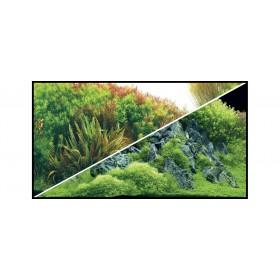 Poster Hobby Planted River / Green Rocks-Hobby-31043