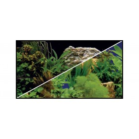 Poster Hobby Plantes 2/7