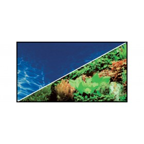 Poster Hobby Plantes 8 / Marin Blue