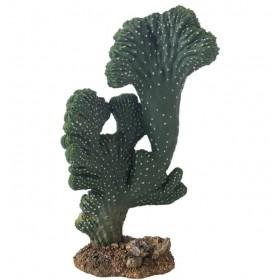 Plante artificielle Hobby Cactus Victoria-Hobby-37019
