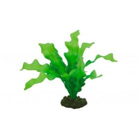 Plante artificielle Hobby Echinodrus