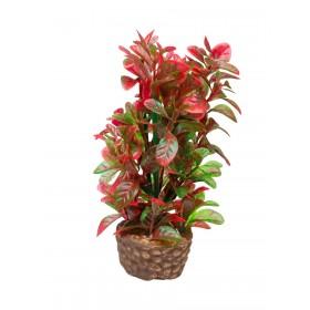 Plante artificielle Hobby Flora Stone 4-Hobby-51533