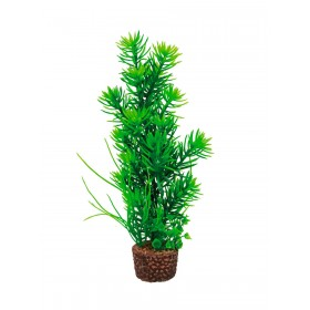 Plante artificielle Hobby Flora Stone 5-Hobby-51534