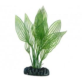 Plante artificielle Hobby Aponogeton