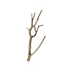 Branche ramifié en liège Hobby -Hobby-35018