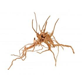 Racine araignée Fingerwood Hobby