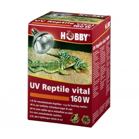 Ampoule Hobby UV Reptile vital-Hobby-37316