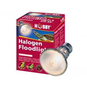 Ampoule Hobby Halogen Floodlight