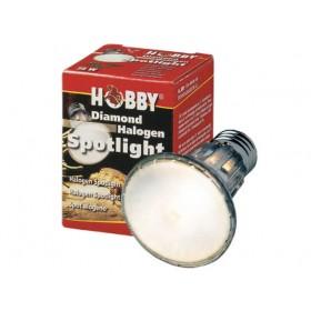 Ampoule Hobby Halogen Spotlight-Hobby-37390