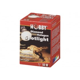Ampoule Hobby Halogen Spotlight